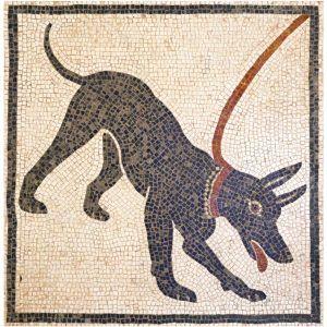 Mosaico perro Cave Canem. Tamaño 38×38 cm. 5000 teselas de 5mm.