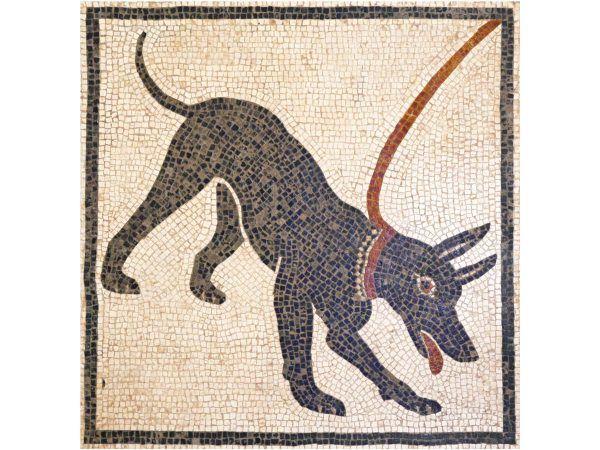mosaico perro cave canem