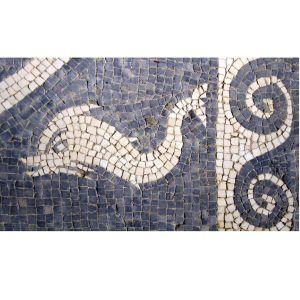 Kit mosaico romano delfín con cenefa. 1000 teselas de 7,5mm. Tamaño 38×22 cm.