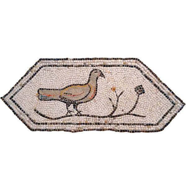 kit mosaico tórtola romana
